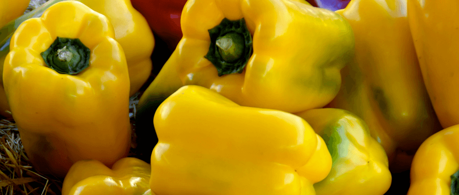 Bucatini ai peperoni gialli - Ricette Al Microonde