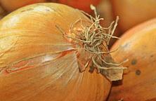 Zuppa di cipolle al porto - Ricette al Microonde